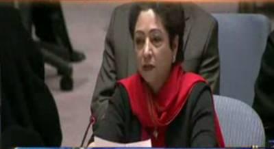 پاکستان نے مسئلہ کشمیر اقوام متحدہ سمیت تمام عالمی فورمز پر اجاگر کردیا ہے: ملیحہ لودھی