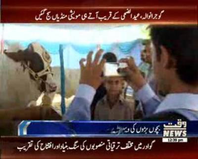 عید الضحی کے قریب آتے ہی مو یشی منڈیاں سج گئیں