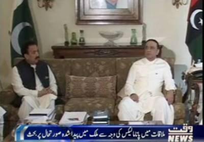 سابق صدر آصف علی زرداری سے سینیٹر رحمان ملک نے لندن میں ملاقات کی