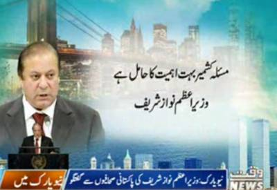 Prime Minister Nawaz Sharif Talk To Media in New York