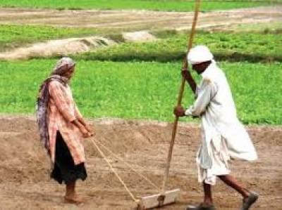 وزیراعلیٰ پنجاب محمد شہبازشریف کا چھوٹے کاشتکاروں کو 100ارب روپے کے بلاسود قرضے فراہم کرنے کا اعلان