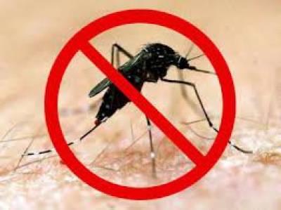 کراچی، سرکاری اسپتالوں میں ڈینگی وائرس کی تشخیص کٹس ختم