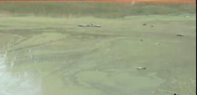 ٹوبہ ٹیک سنگھ کے محلہ پیٹرکالونی کے رہائشی گندہ اوربد بودار پانی پینے پر مجبور ہو گئے