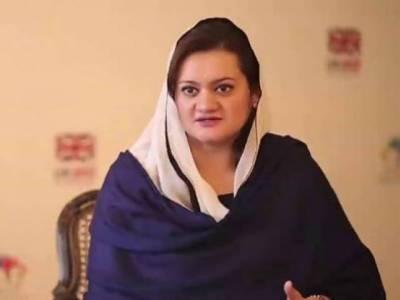 حکومت آزادی اظہار رائے پر یقین رکھتی ہے، پاکستان میں آزاد میڈیا کی ترقی کے لئے سہولیات جاری رکھیں گے : مریم اورنگزیب