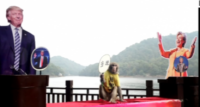 پیشن گوئی امریکی انتخابات جیتنے کے لئےچین میں اب بھی بندر کی تصاویرہیں