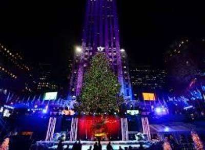 نیویارک میں کرسمس کا روایتی درخت نصب کردیا گیا