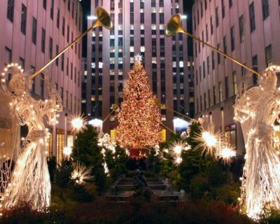 .نیویارک میں کرسمس کا روایتی درخت نصب کردیا گیا