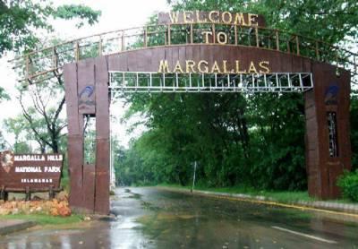مارگلہ نیشنل فاریسٹ کی حدود کے تعین کے لیے چیئرمینCDA اورمیئر شیخ ناصر نے کمیٹی کی قیام کی منظوری دے دی۔