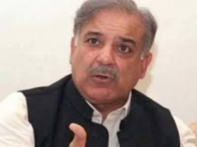 پاکستان کو آگے لے جانے کیلئے تمام صوبوں کو مل کر چلنا ہوگا۔ چاروں اکائیاں ترقی کریں گی تو ملک آگے بڑھے گا:شہباز شریف