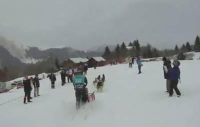 فرانس سالانہ ریس کا آغاز: کتے اپنے مالکان کے ہمراہ 670 کلومیٹر کا فاصلہ طے کریں گے۔