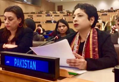 کشمیر کے کاز کو دبانے کے لئے پاکستان میں دہشتگردی کی لہرکوتقویت دی جارہی ہے۔ ملیحہ لودھی