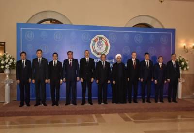 اقتصادی تعاون تنظیم کاسربراہی اجلاس کامیابی سے ختم