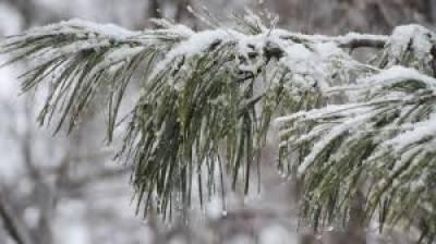 ملک کے بالائی علاقے برفباری کی لپیٹ