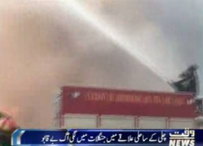 چلی کے ساحلی علاقے میں جنگلات میں لگی آگ بے قابو ہوگئی