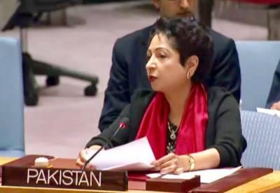 پاکستان چاردہائیوں سےافغان بھائیوں کی مہمان نوازی کررہاہے۔ ملیحہ لودھی