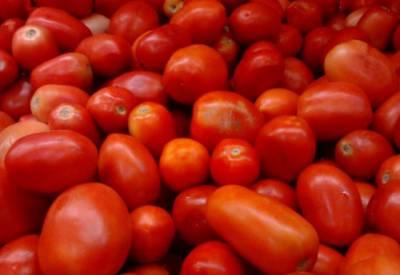 لاہور میں ٹماٹر کا بحران ختم کرنے کیلئے انتظامیہ نے ٹماٹروں کے ٹرک لگا دیئے۔