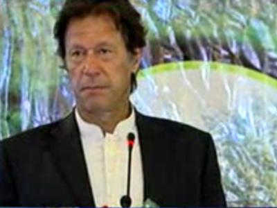 کے پی کے میں کتنے درخت لگ چکے ہیں عمران خان نے بتا دیا۔۔۔۔
