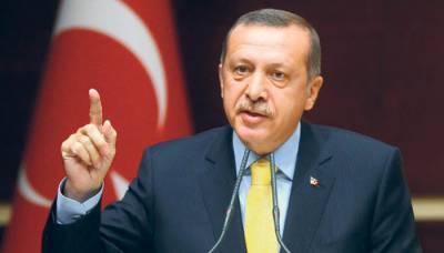 ہم ترک جمہوریت پر کسی کو آوازیں کسنے کی اجازت نہیں دیں گے۔ ترک صدر