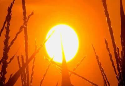 اگلے 2روز کے دوران لاہور،فیصل آباد، سرگودھا، گوجرانولہ، ساہیوال، ملتان میں شدید گرمی پڑے گی۔