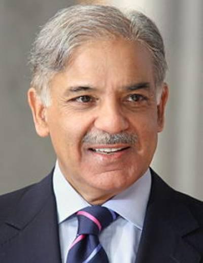 ملک کے اندھیرے مٹانے والی مخلص قیادت پر بہتان تراشی کرنے والے پاکستان کے بدخواہ ہیں : شہباز شریف