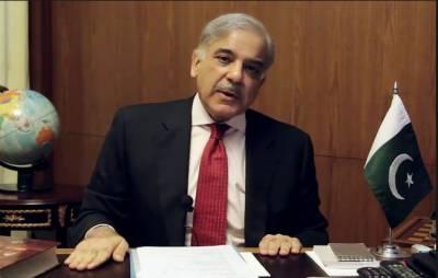 آبروے صحافت ڈاکٹر مجید نظامی نے نظریہ پاکستان کے تحفظ کیلئے اہم کردار ادا کیا۔ شہبازشریف