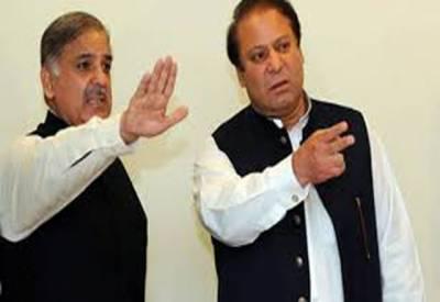 وزیراعلیٰ پنجاب اپنے بڑے بھائی کے حلقے این اے 120سے ہی الیکشن لڑیں گے۔