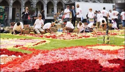بگونیا پھولوں سے تیار کردہ قالین برسلز کے گرینڈ پلیس اسکوائر پر عام عوام کے دیکھنے کے لیے رکھا گیا ہے