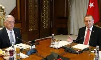 امریکی وزیردفاع جیمز میٹس اور انقرہ میں ترک صدر طیب اردگان کی ملاقات میں شام اور عراق کے بحران سمیت علاقائی معاملات پر بات چیت کی گئی
