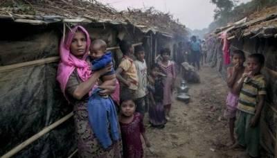 رخائن میں روہنگیا مسلمانوں کے اکثریتی علاقے میں 2600 سے زیادہ گھروں کو جلا دیا گیا