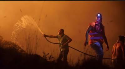 پرتگال کے جنگلات میں لگنے والی آگ سے اب تک41 افراد ہلاک اور 71زخمی