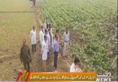 صوبہ بھر میں نو سو سولہ ایکڑ رقبے پر کاشت سبزیاں تلف کردی گئیں،