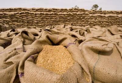 سال 2017-18ءمیں گندم کا اضافی سٹاک 7.05 ملین ٹن تک بڑھنے کا امکان ہے