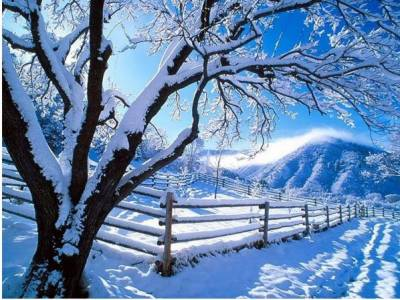 چین میں شدید ترین برف باری کے بعد برف کی سفید چادر اوڑھے مختلف علاقوں کے دلکش مناظر نے دیکھنے والوں کو سحر انگیز کر دیا۔