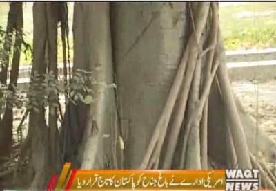 باغوں کے شہرلاہور میں ایک باغ ایسا بھی ہے جسے قدیم درختوں کے سبب پاکستان کا تاج قرار دیا گیا ہے