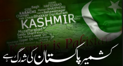 Specail Video For Kashmir Solidary Day