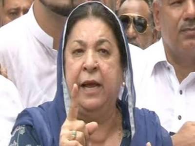 پنجاب حکومت کے تمام منصوبے اور کمپنیاں اربوں روپے کی کرپشن کر رہی ہیں۔ڈاکٹر یاسمین راشد