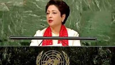 Maleeha Lodhi Statement about Pakistan