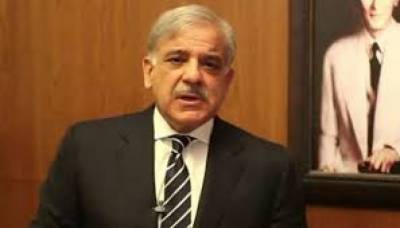 وزیراعلیٰ پنجاب شہباز شریف مسلم لیگ ن کے بلا مقابلہ صدر منتخب ہو گئے