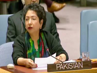 پاکستانی خواتین نے دنیا بھر میں اپنا مقام منوایا ہے۔ ڈاکٹر ملیحہ لودھی