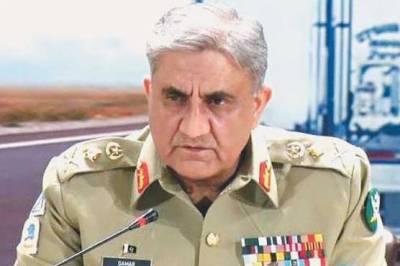 آرمی چیف جنرل قمر جاوید باجوہ سے فاٹا اور کے پی کے وفد نے پشاور میں ملاقات کی