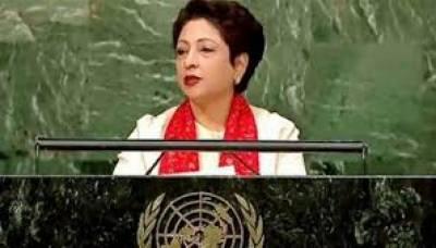 بحیثیت رکن پاکستان یواین اوکی غیر سرکاری تنظیموں کی کمیٹی سے تعاون جاری رکھےگا، ملیحہ لودھی