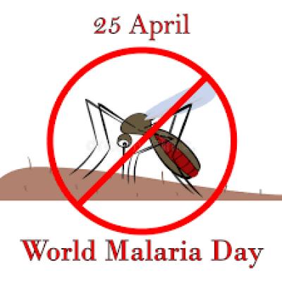 پاکستان سمیت دنیا بھر میں آج ملیریا سے آگاہی کا دن منایا جارہا ہے