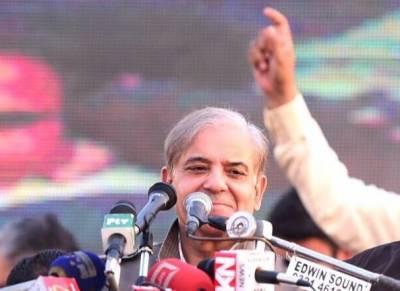 عمران خان سینیٹ الیکشن میں وصول والےبن گئے, یہ دن رات جھوٹ بولتے اورالزام لگاتے ہیں، صدرمسلم لیگ ن شہبازشریف