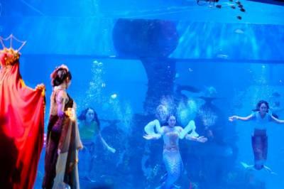 جل پری کا لباس زیب تن کرکے اسکوبا ڈائیونگ کا شاندار مظاہرہ کرنے والی خواتین نے سب کو حیران کردیا