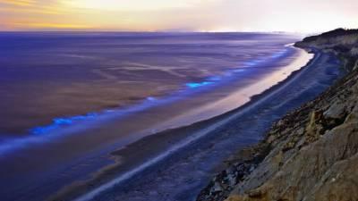 کیلیفورنیا کا ساحل سین ڈیگو رات کی تاریکی میں روشن ہوگیا