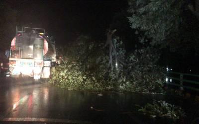 لاہور سمیت پنجاب میں تیز آندھی اور موسلادھاربارش, 5 افراد جاں بحق، 13 زخمی