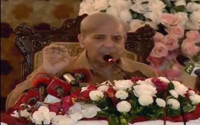 سندھ کے حکمرانوں نے کراچی سمیت صوبے کے عوام کی کوئی خدمت نہیں کی۔ شہباز شریف
