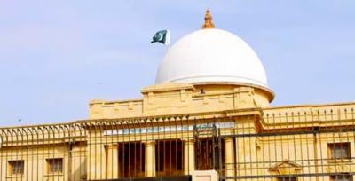 The Supreme Court Karachi Registry heard petrol pricing case.