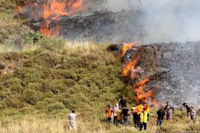 اسرائیل نے فلسطینیوں کی کھڑی فصلوں میں آگ لگا دی