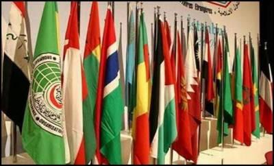 اسلامی تعاون تنظیم مسئلہ کشمیرکے حل کیلئے سفارتی کوششیں جاری رکھے گی